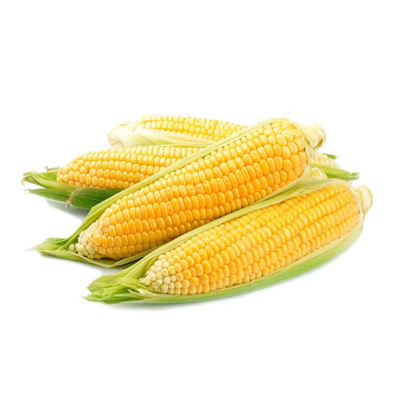 кукуруза-800×800-1